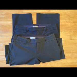 TWO pairs of GAP Modern Boot dress pants, size 12A